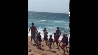 Shark scare at Salt Rock Beach, KZN