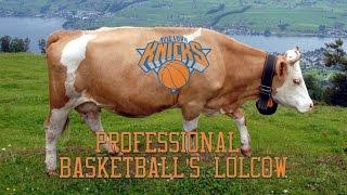 The New York Knicks: Professional Basketball