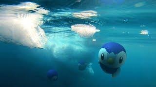 Pokémon GO: Discover a vast new world