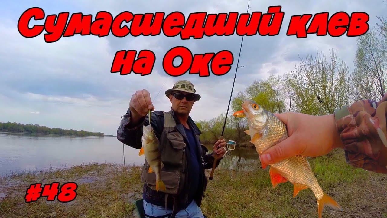 река ламь отчеты о рыбалке 2017