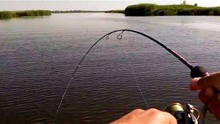 ловля плотвы спиннингом лайтом видео