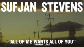 """Sufjan Stevens, """"All Of Me Wants All Of You"""" (Official Audio)"""