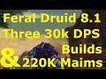 WoW Feral Druid 8.1 DPS Guide Three 30k ...mp3