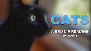 """[PARODY] """"CATS"""" — A Bad Lip Reading"""