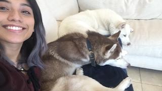 PENTATONIX Live Stream: Hanging With Kirstin