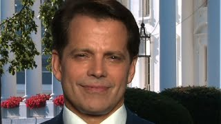 Scaramucci spars with Cuomo over Sessions