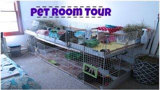 •Pet Room Tour• Sept. 2015