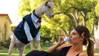 Is This Real Life? | Hannah Stocking