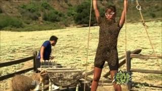 Fear Factor Season 7 Episode 6 - The Bee