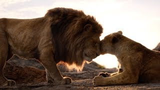The Lion King   Protect The Pride