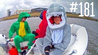 #181: Gratis naar de Dolfijnen [OPDRACHT]