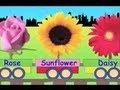 Learn Flower Train - learning for kidsmp3