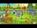 Baby Animals Names and Soundsmp3