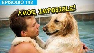 Amor Imposible L Whatdafaqshow Com