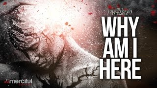 Why Am I Here - The Purpose of Life