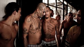 MS-13: The Homegrown Gang Trump Wants to Deport | NYT