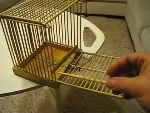 Ловушка для птиц как сделать своими руками
