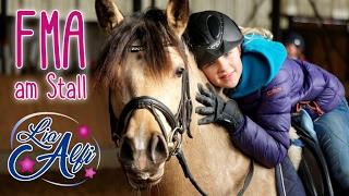 Lia & Alfi - FMA am Stall und zwei neue Ponys?