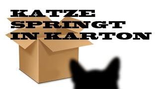 Katze springt in Karton [Neue HD]