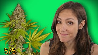 Top 5 FACTS About Weed