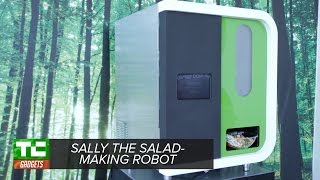 Sally the salad-making robot