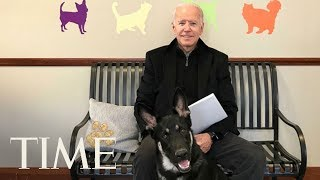 Joe Biden Adopts New Dog From Delaware Humane Society | TIME