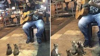 Der Straßenmusikant will einpacken. Doch die kleinen Zuhörer sind damit gar nicht einverstanden...