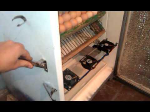 Как сделать инкубатор из холодильника инструкция