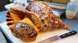 Japanese Street Food - GIANT TRUMPET CONCH Sashimi Okinawa Seafood Japan