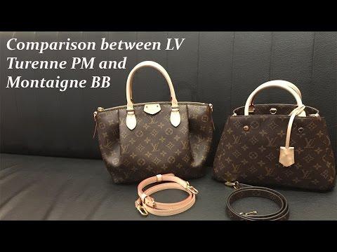 0dae6b761b86 Title  Comparison between Louis Vuitton Alma BB and Croisette ...