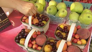 Farmers market lies exposed: hidden camera investigation (Marketplace)