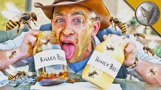 Is KILLER BEE Honey Dangerous?!