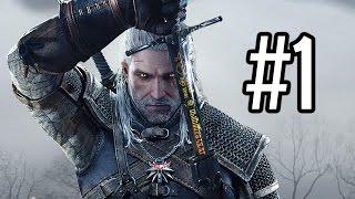 LET THE HUNT BEGIN! - The Witcher 3: Wild Hunt - Walkthrough / Playthrough / Gameplay- Part 1