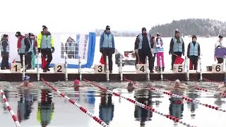 These Swimmers Love Bone-Chilling Arctic Temperatures