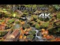 4K ULTRA HD Nature Scene: Fall Oregon Cr...mp3