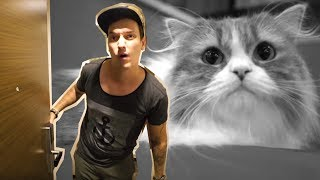 CAT OVERLOAD & Room-Tour in Tokio! Welcome to my Crib!