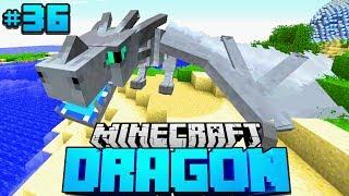 Im LAND der TOTEN DRACHEN?! - Minecraft Dragon #36 [Deutsch/HD]