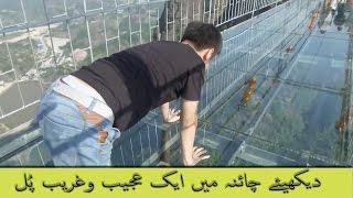 Bridge in China - Glass Bridge in China - The most dangerous bridge in the world