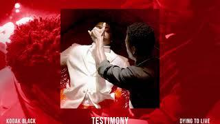 Kodak Black - Testimony (Official Audio)