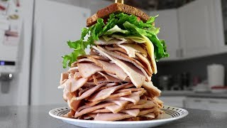 The Largest Sandwich I