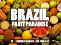 Brazil: Fruit Paradise  - São Paulo Far...mp3