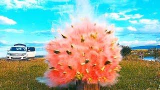 Was passiert wenn ein Böller in einer Wassermelone explodiert