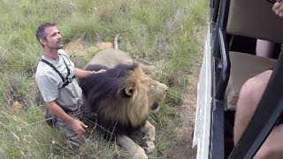 Walking With The Volunteers | The Lion Whisperer