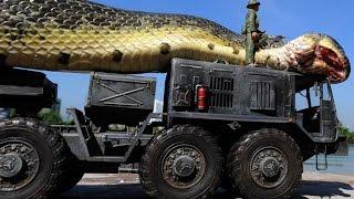 8 Giant Snakes Explained