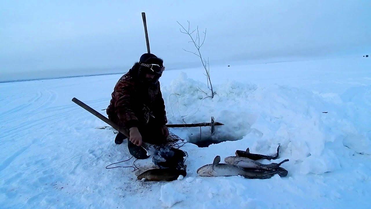 ночная рыбалка на онего
