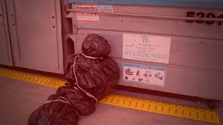 5 Times Garbage Men Found Horrifying Things in the Trash