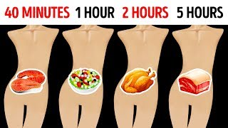 How Long Foods Stay In Your Stomach