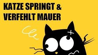 *** FAIL *** Katze springt und verfehlt Mauer (2017)