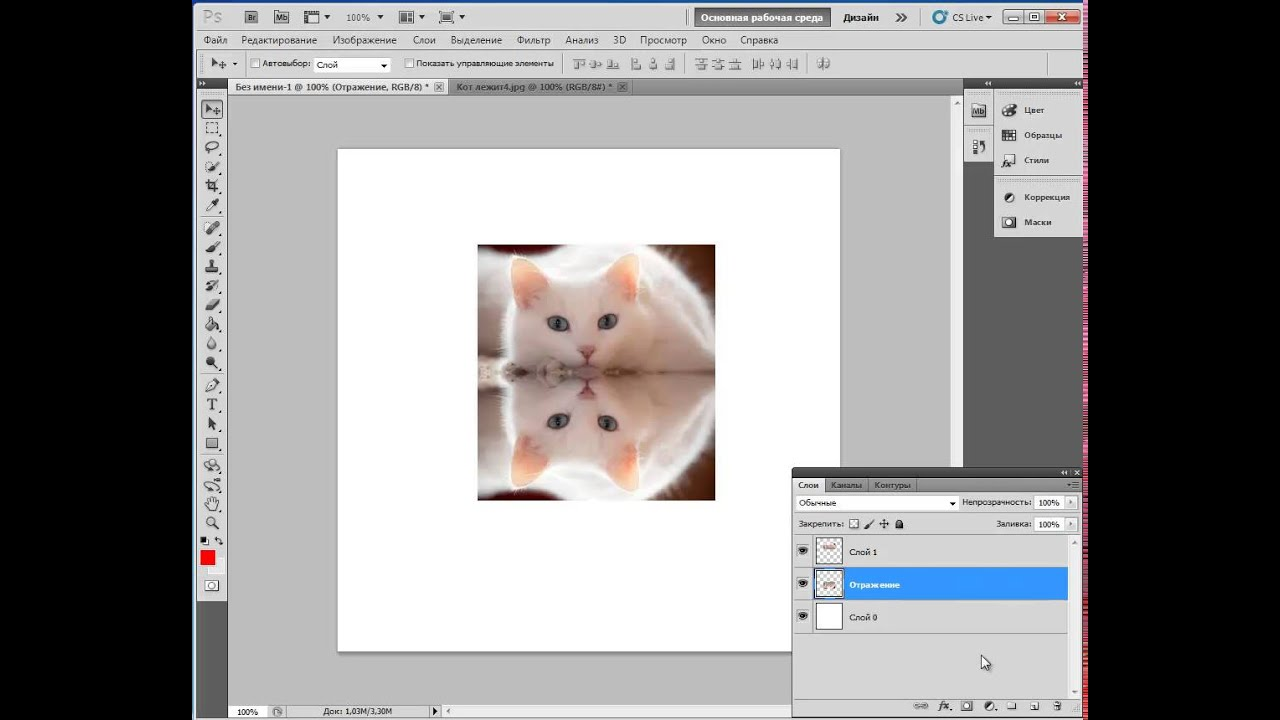 Первые шаги в фотошопе, или зеркальное отражение картинки - Bayan.Tv - Bayana dair. - Video Portal