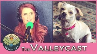 How Lee Saved Her Dog From Meth Addicts   The Valleycast, Ep. 23 (Highlights)